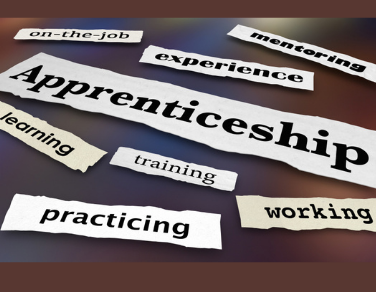 Why Apprenticeships Are the Future for Business