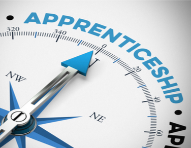 What about an apprenticeship?